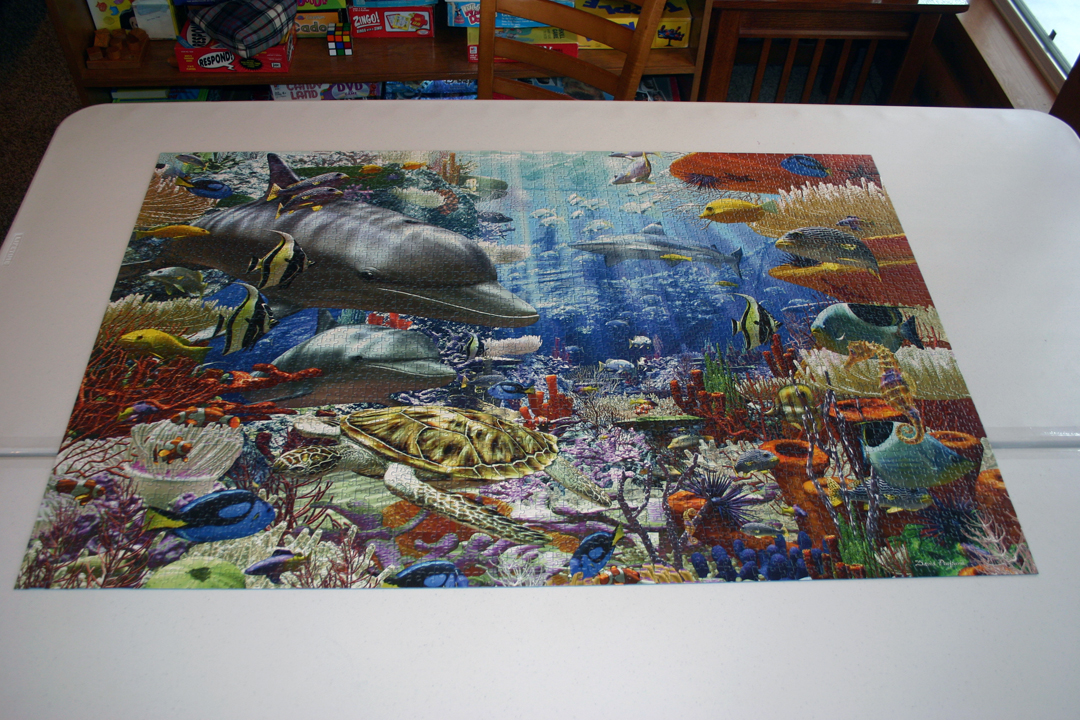 Putting together a 3000 peice puzzle!
