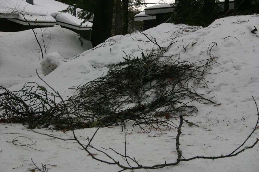 Yes, that is still how high our snowbanks are!