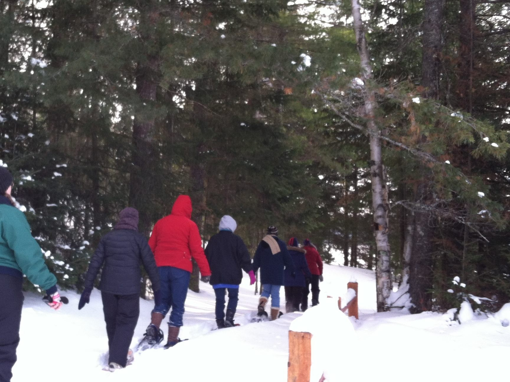 Snowshoeing the nature trail.